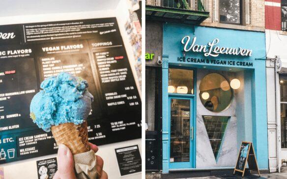 Vegan ice cream new york