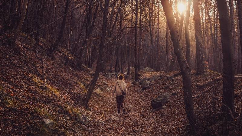 Daily Self Care: Spend time in nature