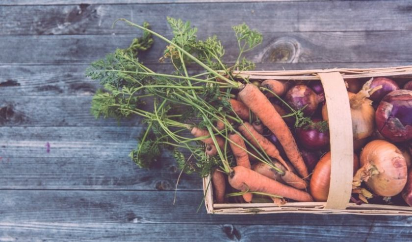 Community Supported Agriculture box of carrots and onions in a basket