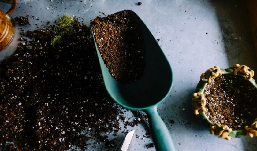 Dirt with scooper - grow your own garden or join a community garden to eat local