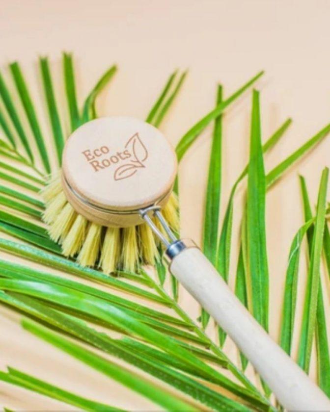 Bamboo Dishwashing Brush from EcoRoots